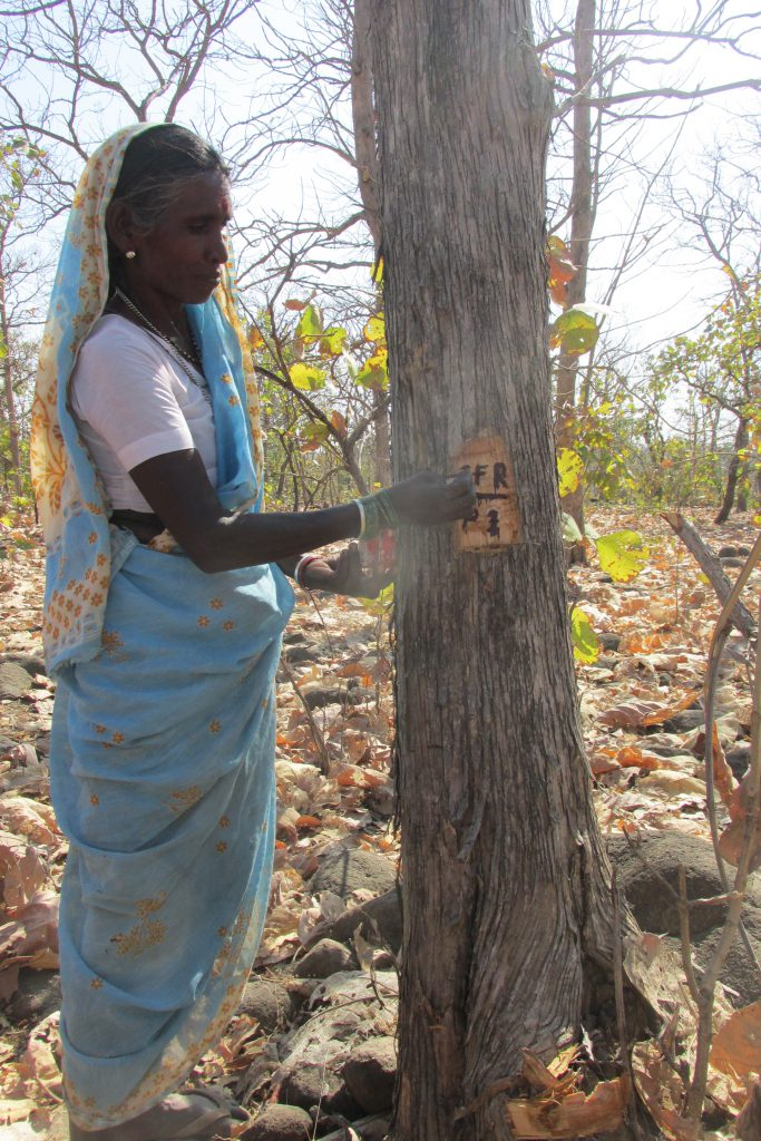 Forest and Livelihood